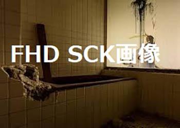 FHD SCK画像